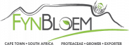 Fynbloem, South African Flower Exporters, Export Flower Company