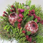 proteas greens